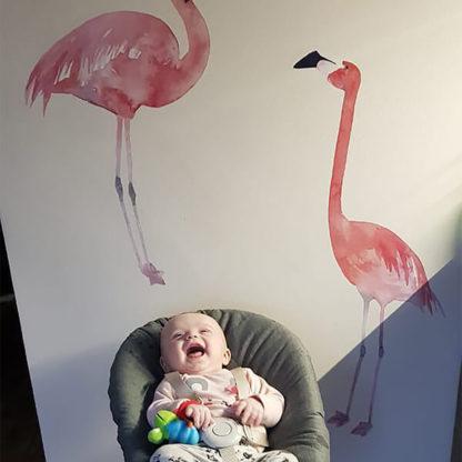 фламинго на стене