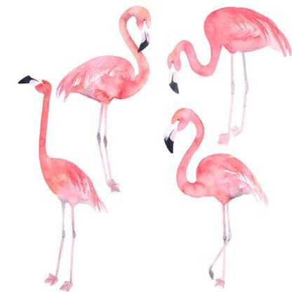 фламинго на стене состав