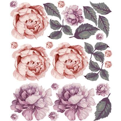 пионы розовые состав