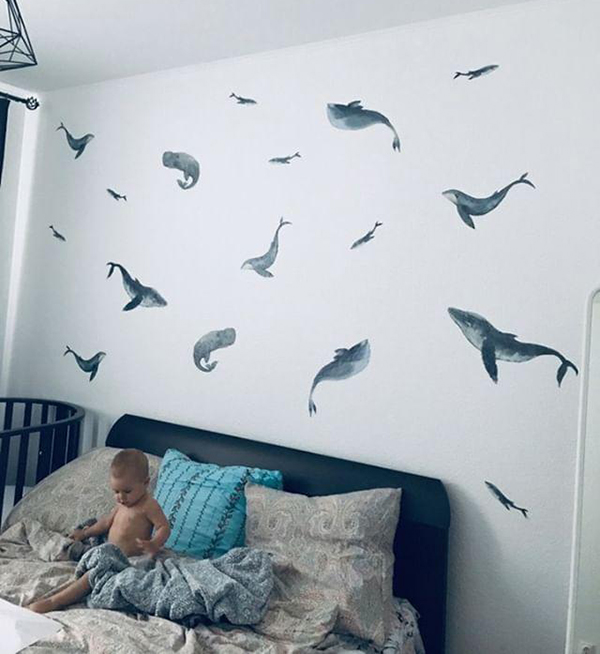 отзыв о китах_3