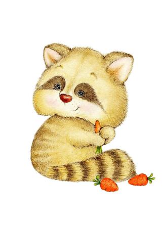 Постер милый енот с морковью  - фото