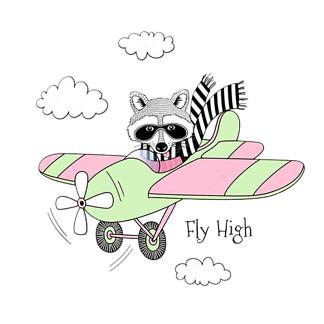 Постер Енот на самолете