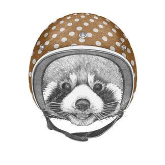 Постер Енот шлеме в горошек