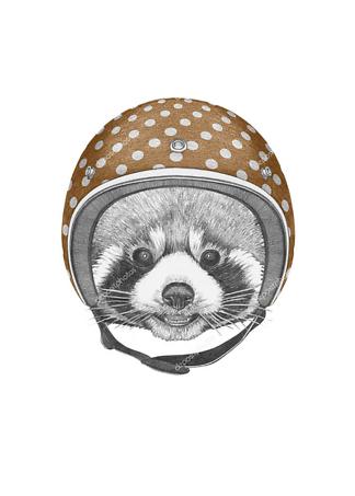 Постер Енот шлеме в горошек  - фото