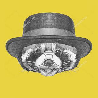 Постер Енот в очках и шляпе