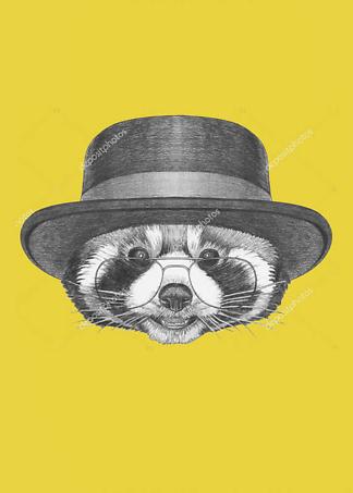 Постер Енот в очках и шляпе  - фото