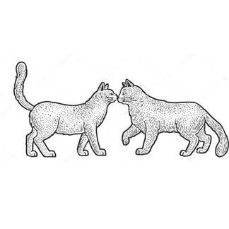 Постер Кот и кошка