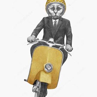 Постер Кот на мотороллере