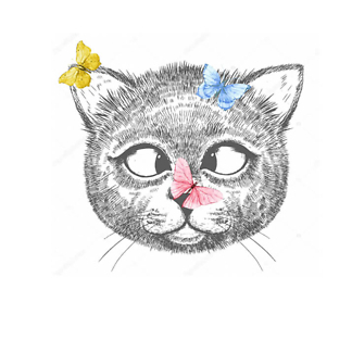 Постер Кот с бабочками