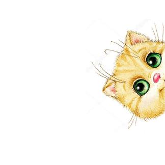 Постер Кот с цветком