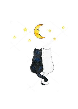 Постер Пара кошек  - фото