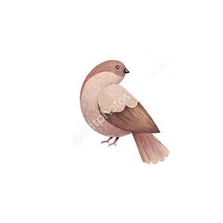 Постер Птица -1