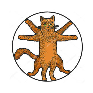 Витрувианский кот