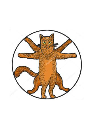 Постер Витрувианский кот  - фото
