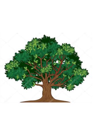 Постер Старый дуб  - фото