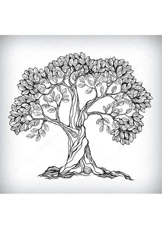 Постер Дерево ЧБ  - фото