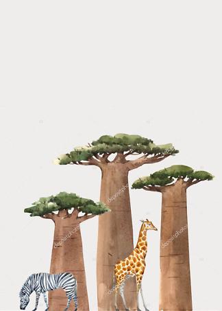 Постер Баобабы и животные  - фото