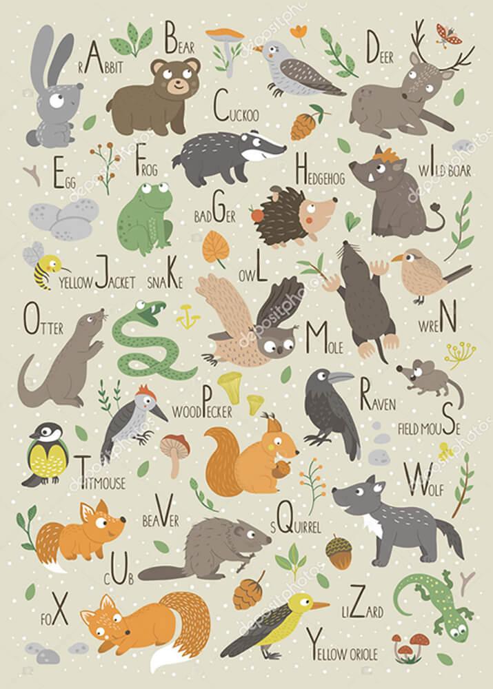 Постер Алфавит детский  - фото