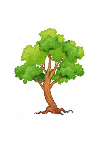 Постер Дерево летнее  - фото