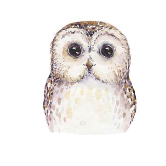 Постер Акварельная сова