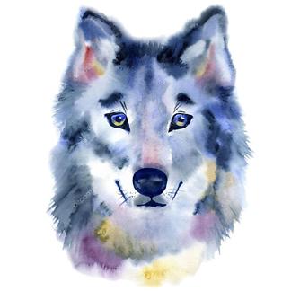 Постер Акварельный волк
