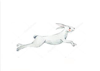 Постер Акварельный заяц -1  - фото