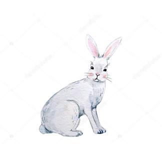 Постер Акварельный заяц -2