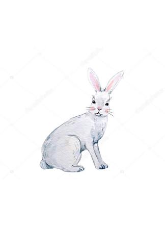 Постер Акварельный заяц -2  - фото