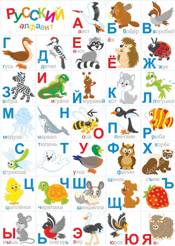 Постер Алфавит с мультяшными картинками  - фото