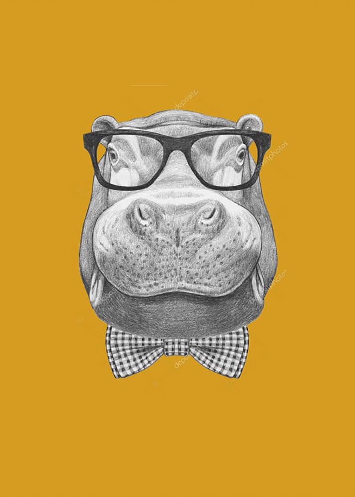Постер Бегемот в солнечных очках  - фото