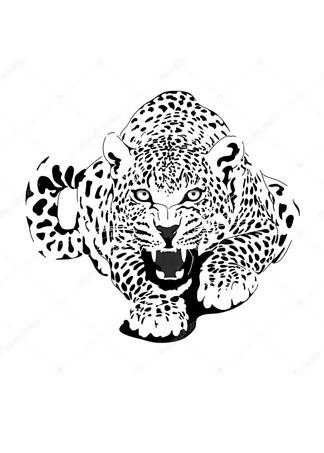Постер Черно-белый леопард  - фото