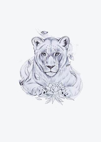 Постер Черно-белый рисунок львицы  - фото