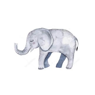 Постер Детеныш слона
