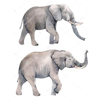 Клоун и слон в цирке
