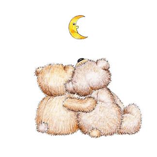 Постер Два влюбленных медведя Тедди