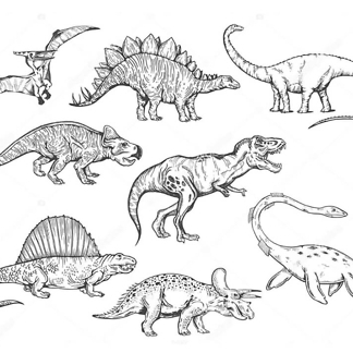 Постер Эскизы динозавров