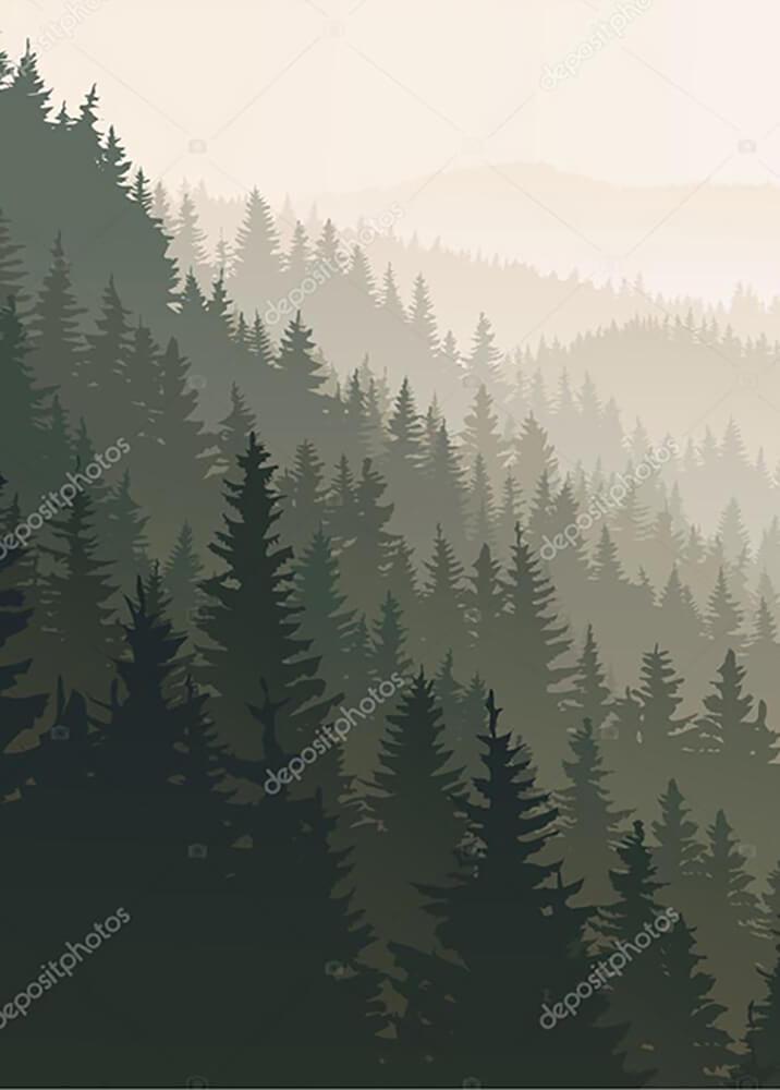 Постер Хвойный лес  - фото