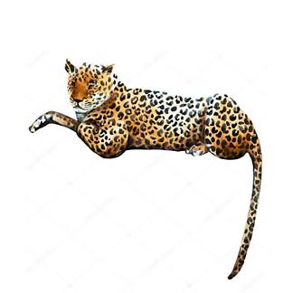 Постер Лежит ягуар