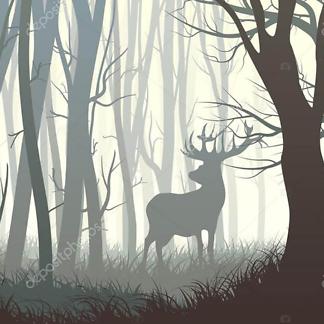 Постер Лось в лесу