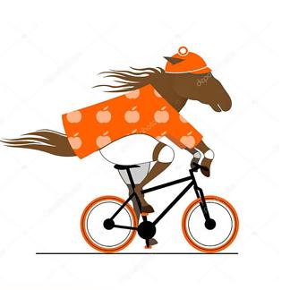 Постер Лошадь на велосипеде