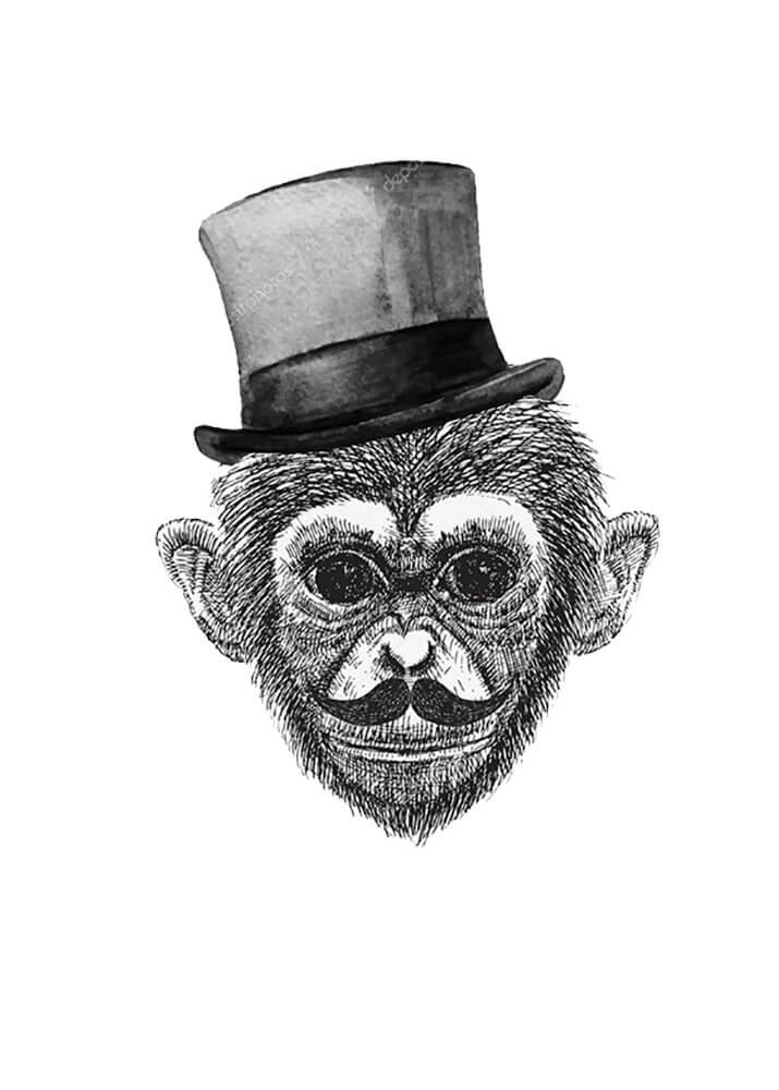 Постер Мистер обезьяна  - фото