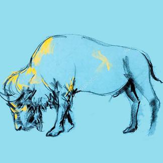 Постер Набросок бизона