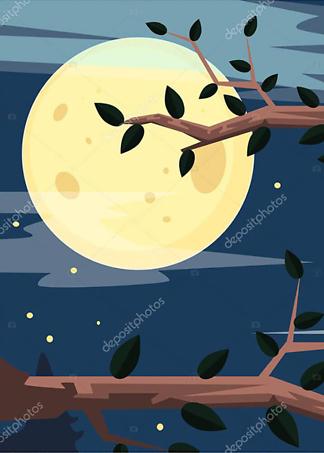 Постер Ночной лес  - фото