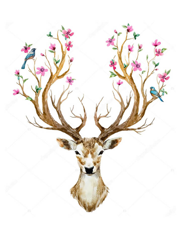 Постер Олень с цветущими рогами  - фото