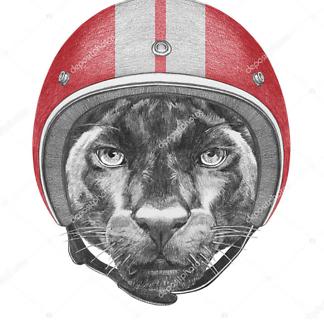 Пантера в шлеме