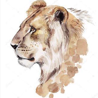 Портрет акварельной львицы