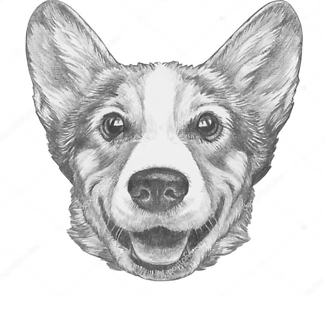 Постер Пибуля на мопеде