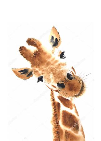 Портрет любопытного жирафа  - фото