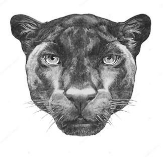 Портрет пантеры