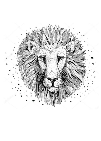 Постер Рисунок льва  - фото